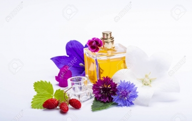 Fragrances in Johannesburg