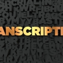 TRANSLATION TO TRANSCRIPTION SERVICES